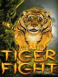 Tiger Fight (240x320)
