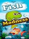 Fish Madness
