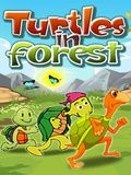 Turtles In Forest-FREE