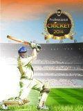 Professional Cricket 2014