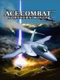 Ace Combat Northern Wings