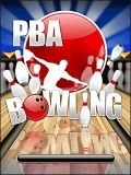 Professional Bowlers Association Bowling