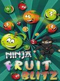 Ninja Fruit Blitz Free (240x320)