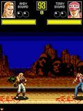 Fatal Fury Touch