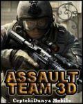 AssaultTeam3D