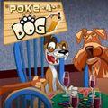 Poke a Dog