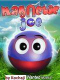 Magnetic joe