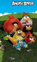 Angry Birds 240x400