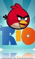 Angry Birds Rio 240?400