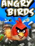 Pájaros enojados