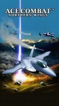 Ace Combat Nothern Wing