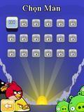 Angry Bird Java