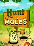 Hunt The Moles 320x240