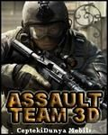 ASSAULT TEAM 3D 1.0