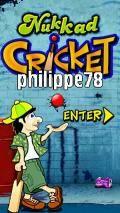 Nukkad Cricket