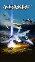 Ace Combat By Tridip Deb