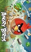 Original Angry Birds For Samsnung S5230