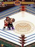 Titans Wrestling