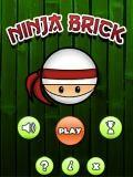 Ninja Bricks 240x400