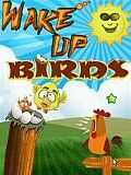 Wake Up Birds 240x297