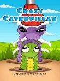 Crazy Caterpillar Kostenlos