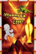 Mummy In Egypt