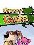 Crazy Cats 360x640
