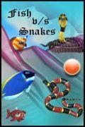 Fish Vs Snake