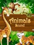 الحيوانات الصوت 360 * 640
