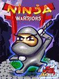 Ninja Warriors 176*208