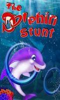 The Dolphin Stunt 480x800