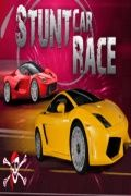 Stunt Car Race