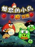 Angry Birds - Crazy Edition