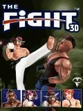 The Fight 3d