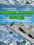 Himalayan Race