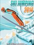 Ski jumping 2014