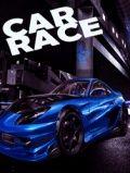 Car Race (240x400)