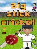 Big Stick Cricket