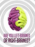 Você está com o cérebro esquerdo ou com o cérebro direito?