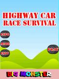 Survival Race Kereta Lebuhraya