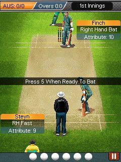 Test cricket java app
