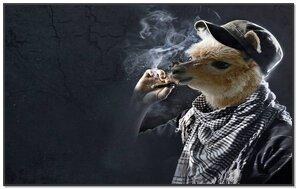 Smoking Is Injurious