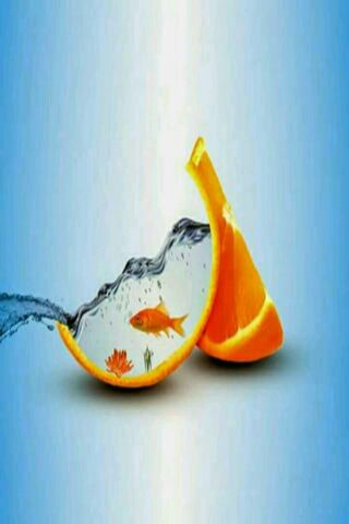 Orange Fish Water 3D