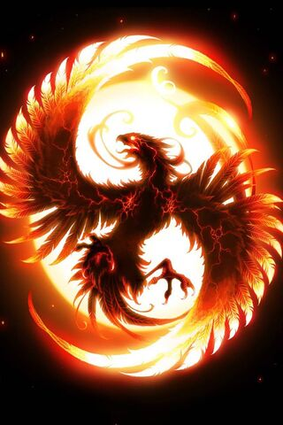 Dragon Fire Wallpaper Download To Your Mobile From Phoneky