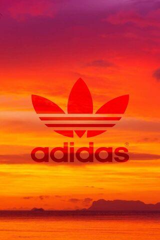 Adidas-Sunset