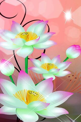 Flowers White