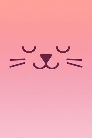 Kucing merah jambu
