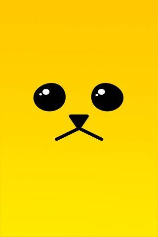 Sad Yellow Dog
