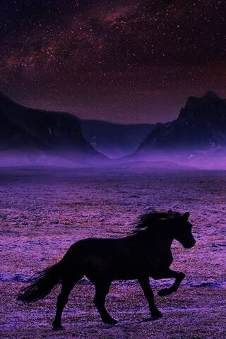 Zapierający dech w piersiach koń