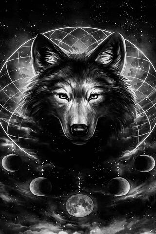 Black White Wolf Wallpaper Download To Your Mobile From Phoneky